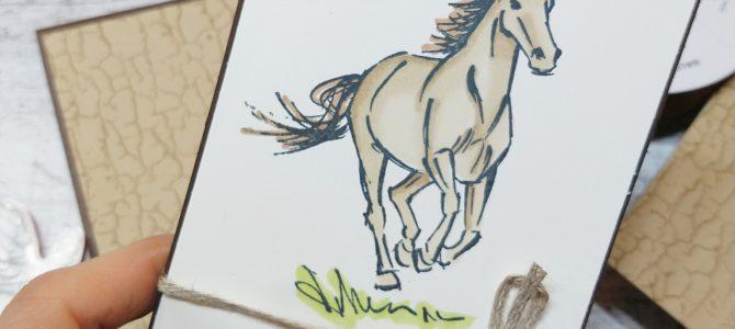 Gutschein für Reitstunden / Pferde