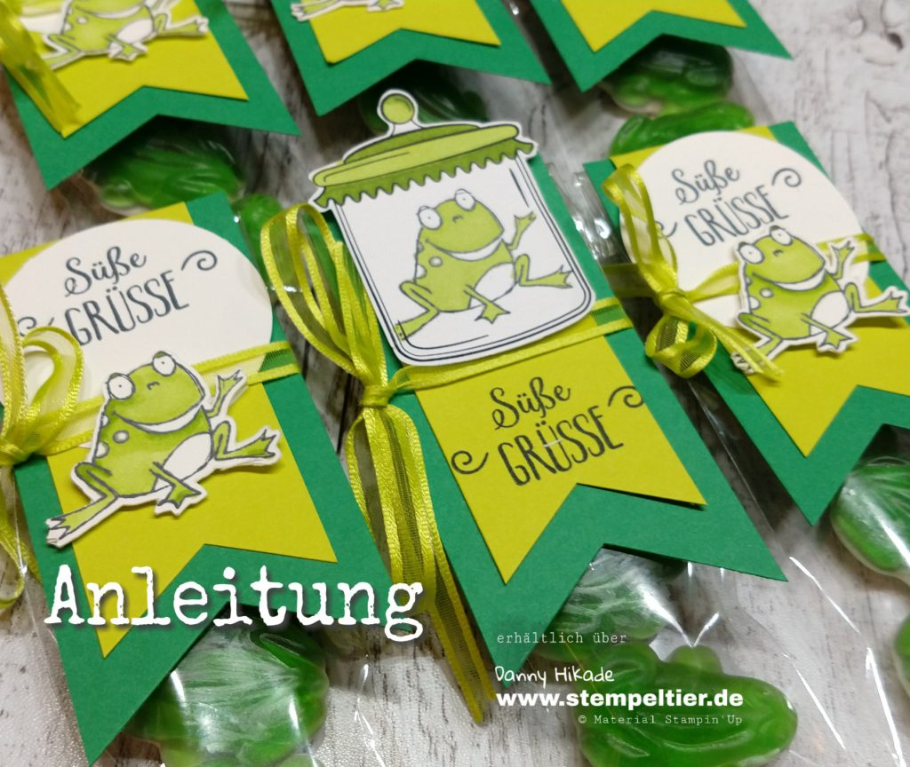 stampin up anleitung goodie froschkönig sab 2019 stempeltier süße grüße