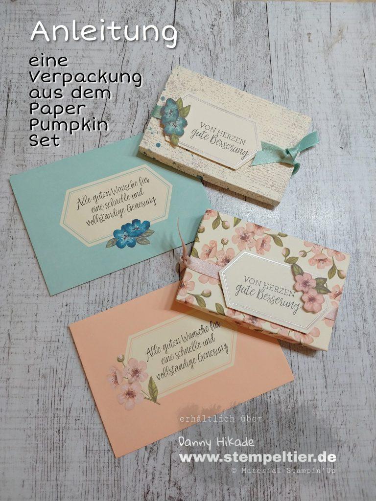 Stampin'up Paper Pumpkin shelli Anleitung Video Verpackung Genesung gute Besserung