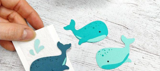 Willkommen im Team – Meereswelt