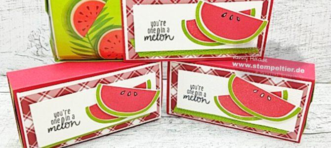 Videotutorial für eine Schiebebox mit Melonen