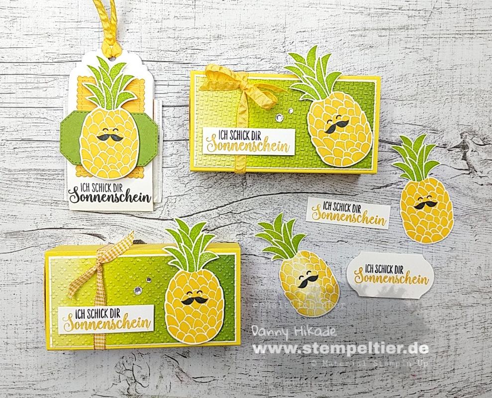 Stampin Up Verpackung ananas cute fruit Früchte Stempeltier