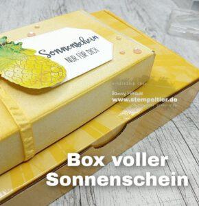 Stampin Up paper pumpkin sonne pur box of sunshine Stempeltier Mini Schachteln