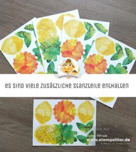 Stampin Up paper pumpkin sonne pur box of sunshine Stempeltier ananas zitrone Sonnenschein