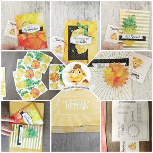 Stampin Up paper pumpkin sonne pur sunshine box