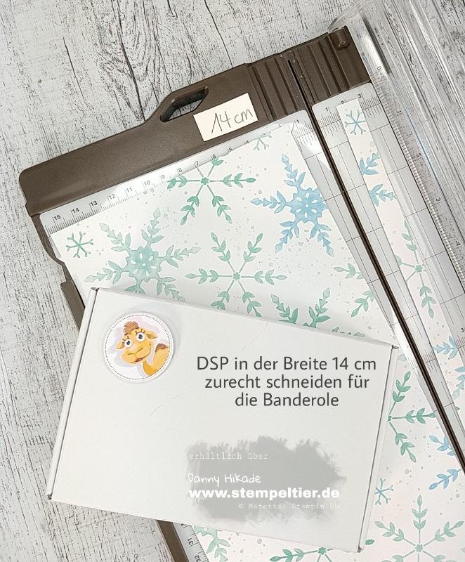 Stampin'Up Schneeflocken Traum DSP Verpackung Anleitung Stempeltier