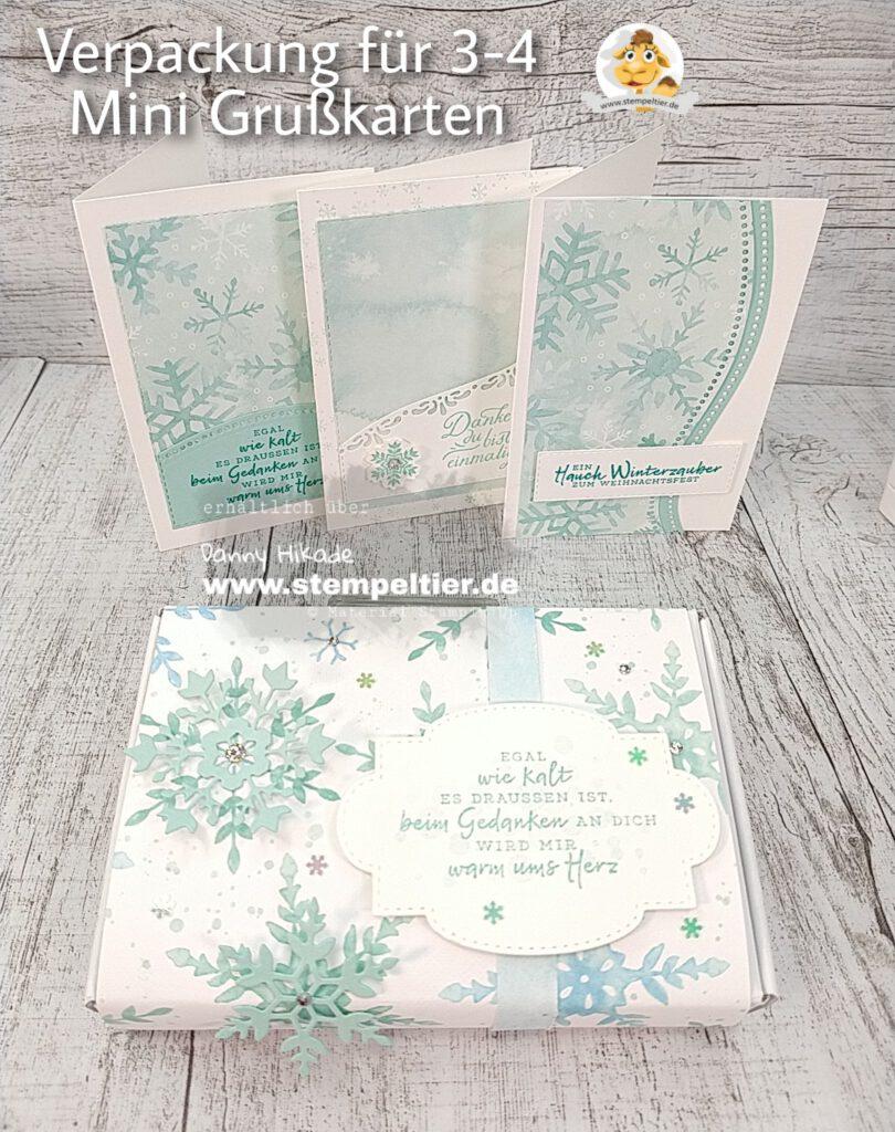 Stampin Up Mini paper pumpkin Schachtel Verpackung grußkarten Schneeflocken Traum
