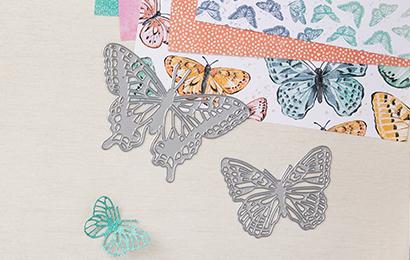 Butterfly Brilliance – Die Schmetterlinge sind los