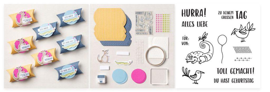 stampin up kartenset kit verpackungen chameleon stempetlier